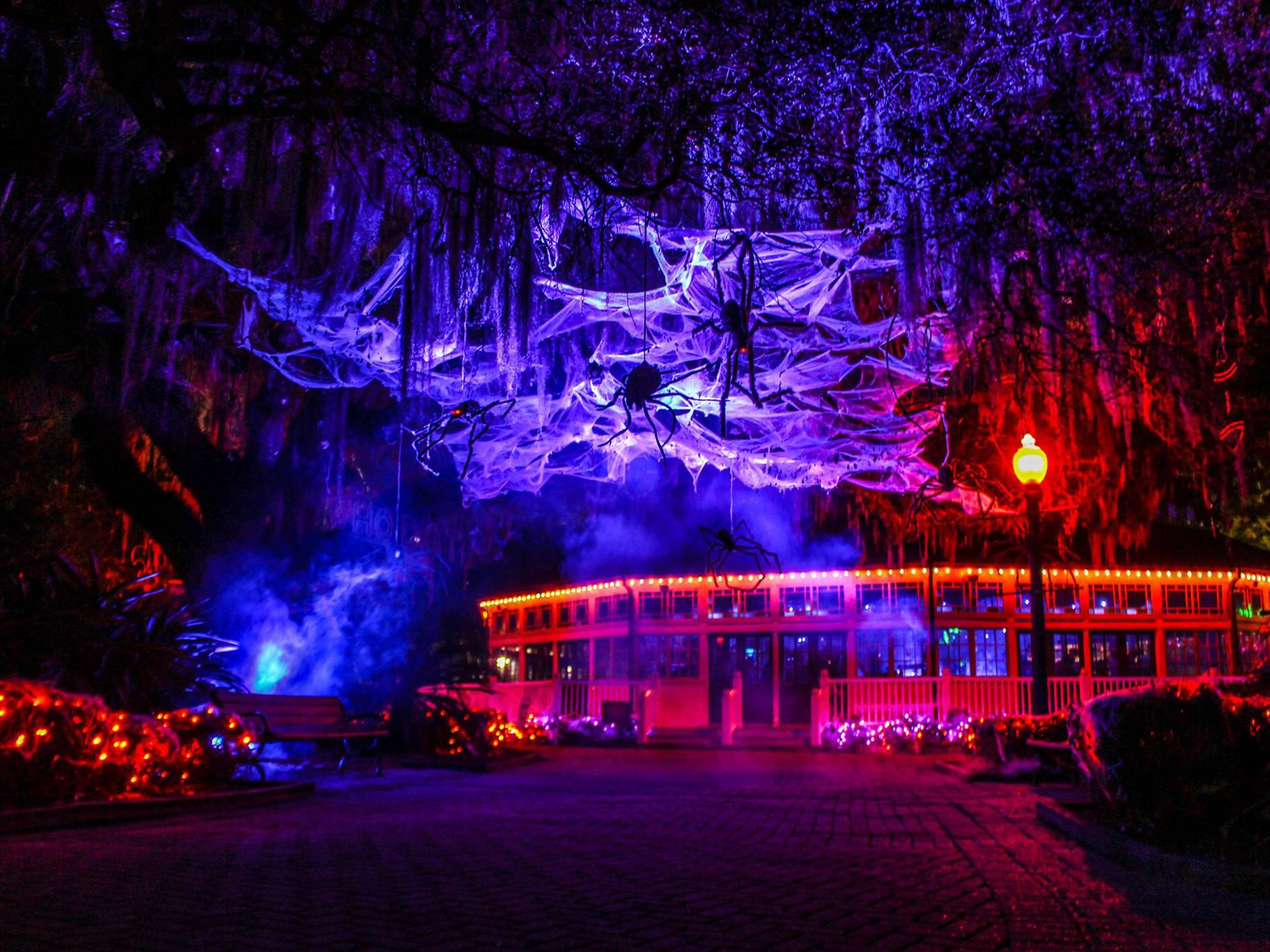 Halloween New Orleans 2020 Events Things to Do for Halloween in New Orleans