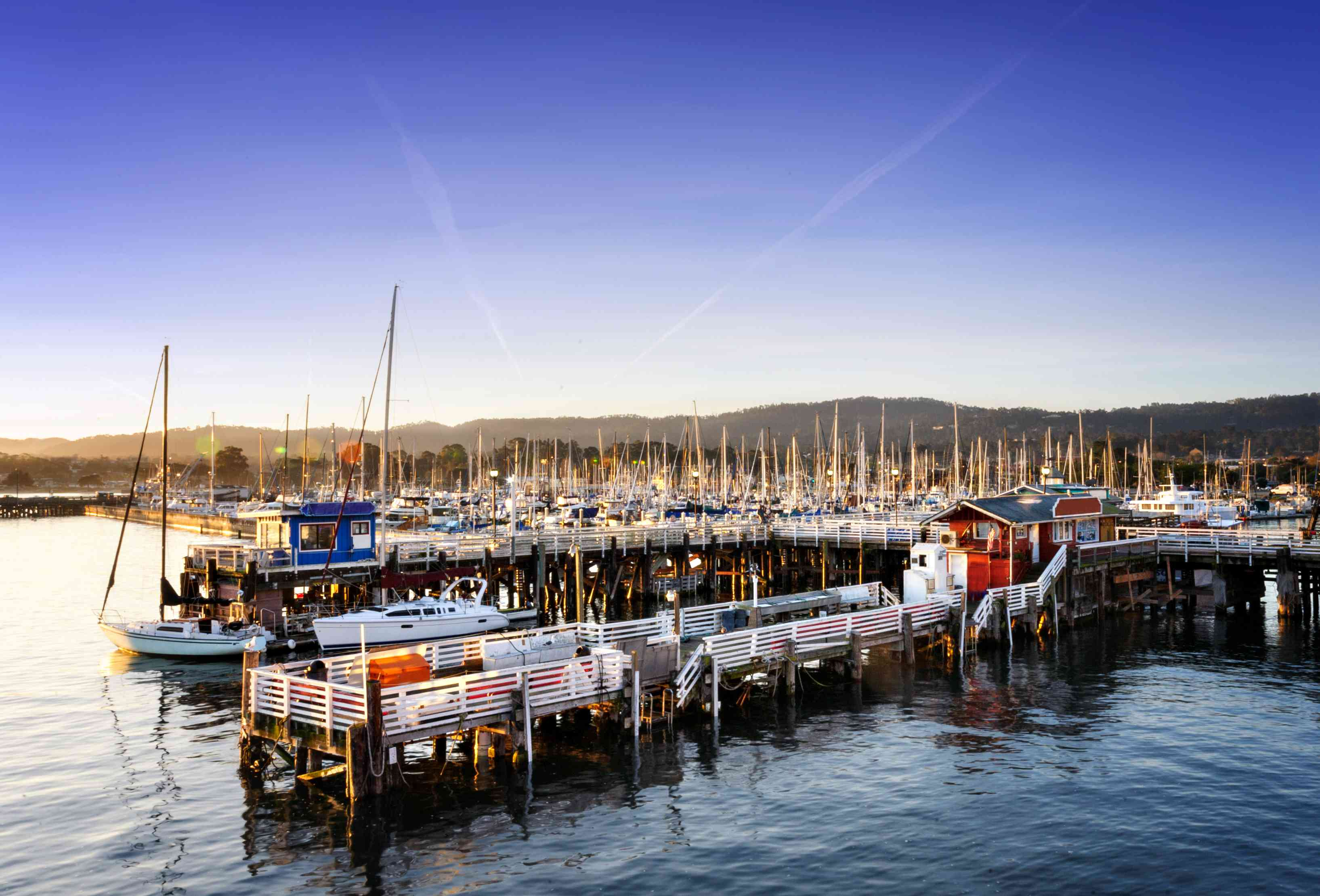 Fisherman's Wharf and Whale Tours in Monterey