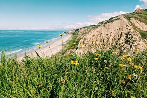 The view from the cliffs above Blacks Beach