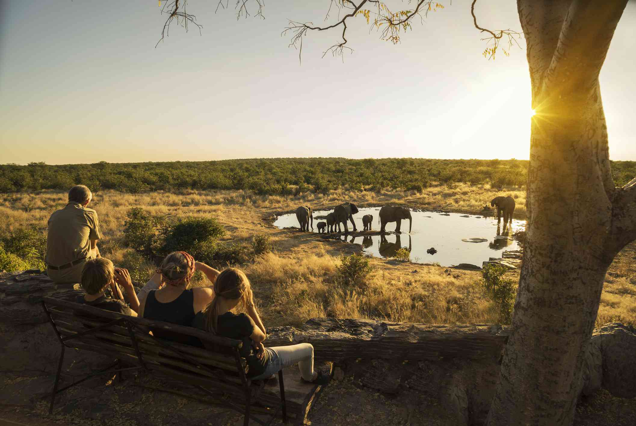 Watching elephants from a safe distance in Namibia