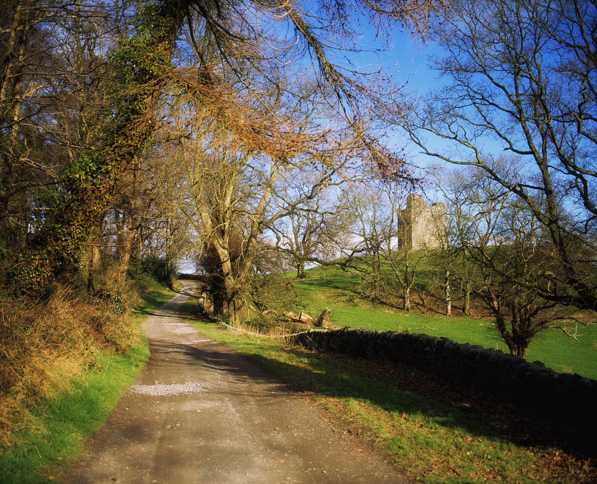 Irish woods and Castle