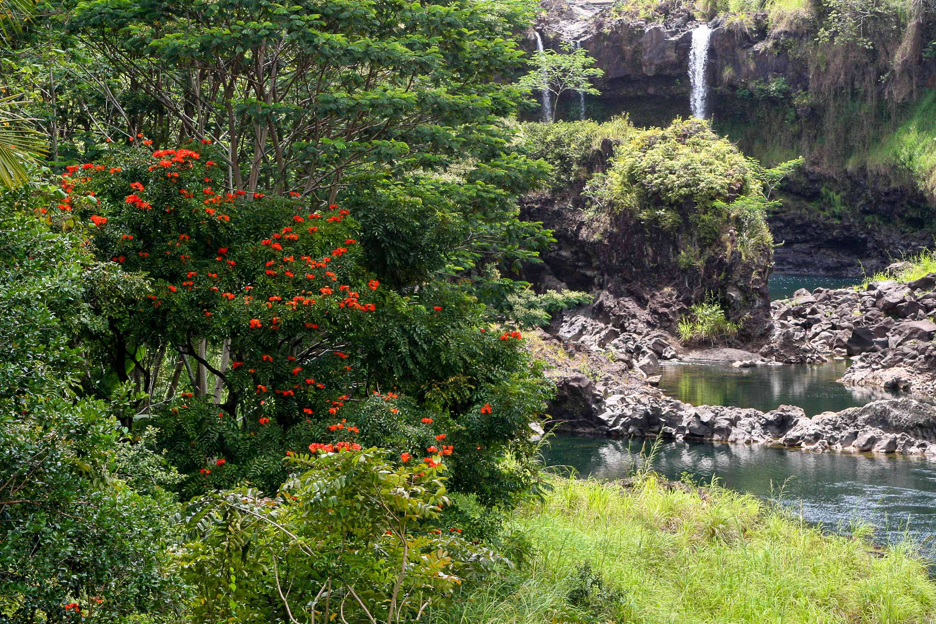 Parque Estatal Hāpuna Beach en Big Island, Hawai