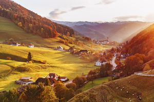 Black Forest of Germany in the fall