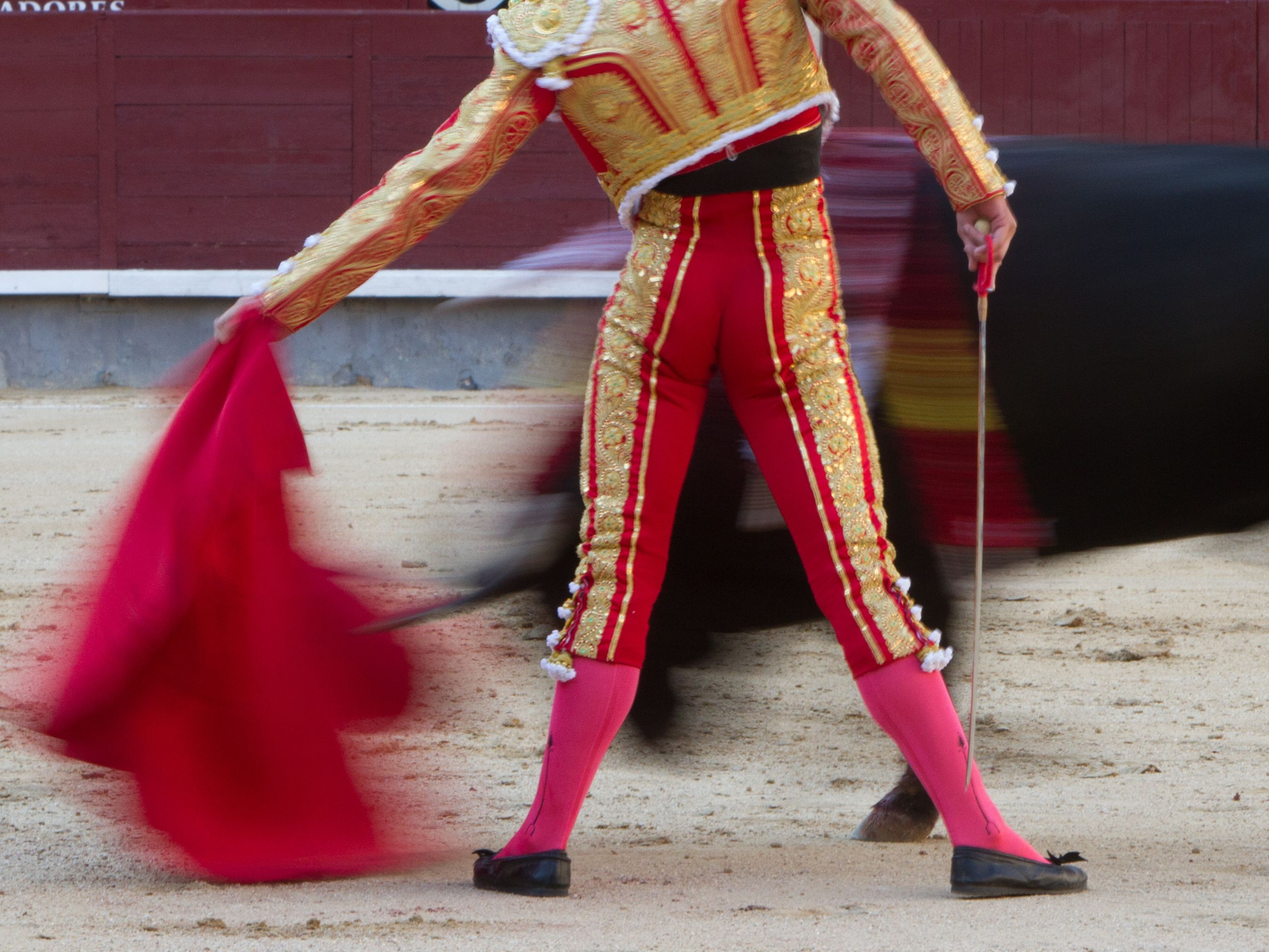 Where to See a Bullfight in Spain