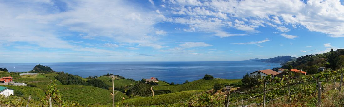 View of the coastline from just outside Getaria