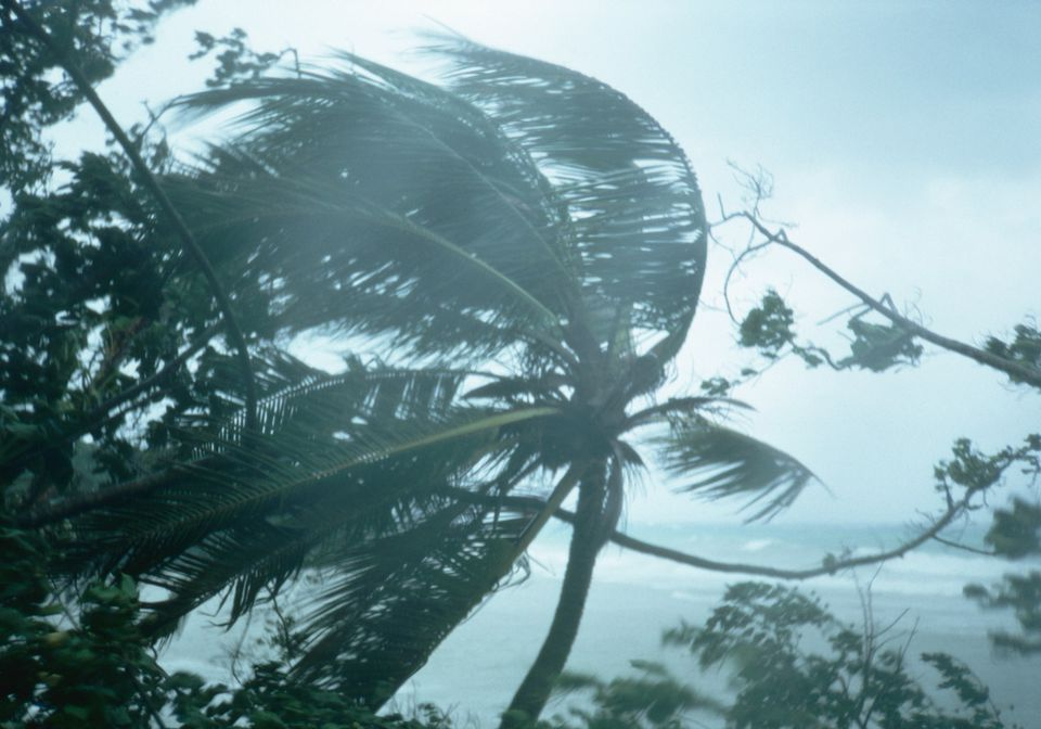 Hurricane Gilbert in Jamaica (1988)