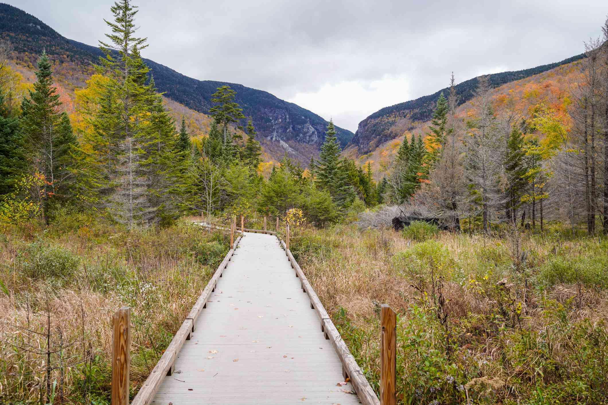 Hiking trail through Vermont