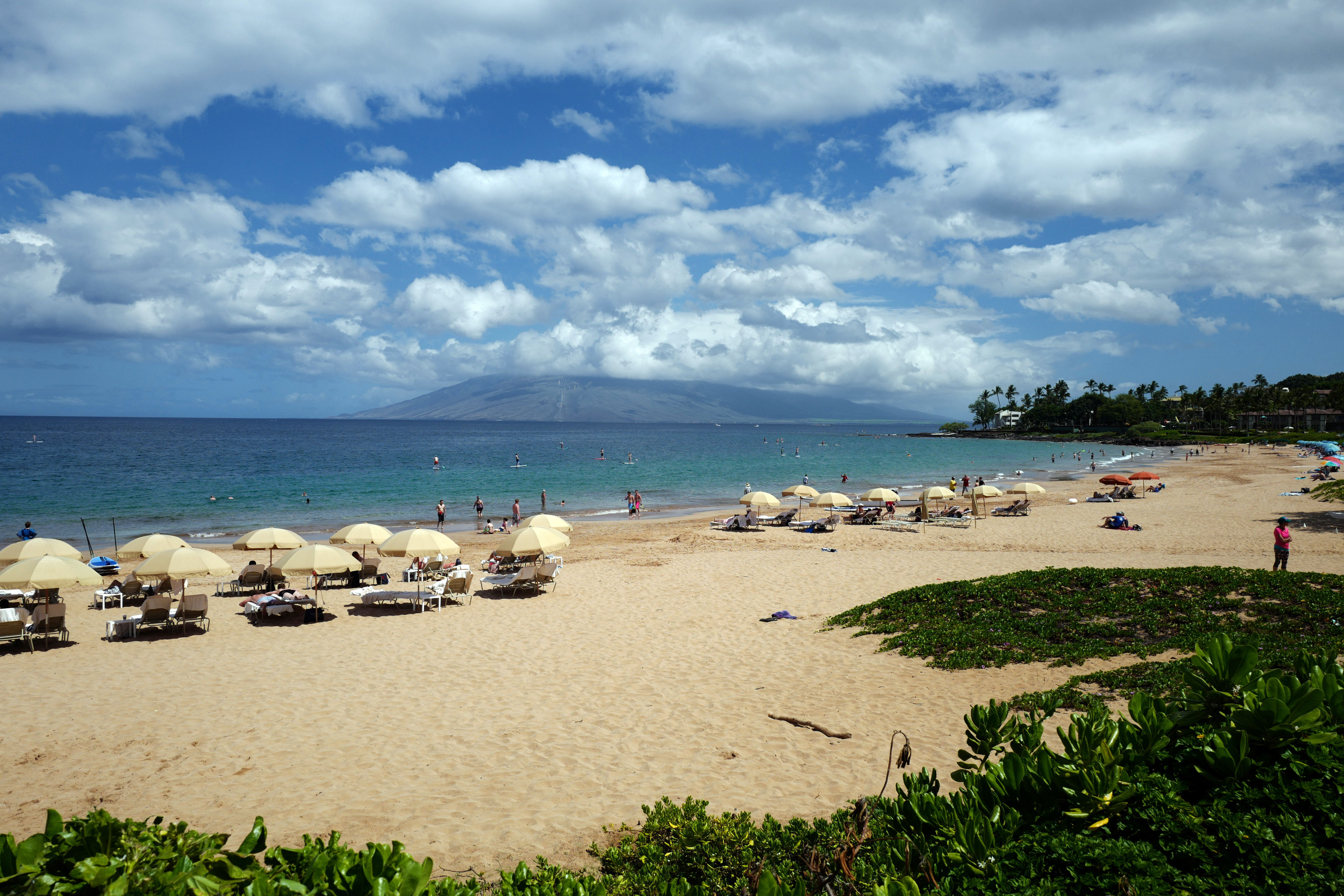 What are the Best Beaches on Maui?