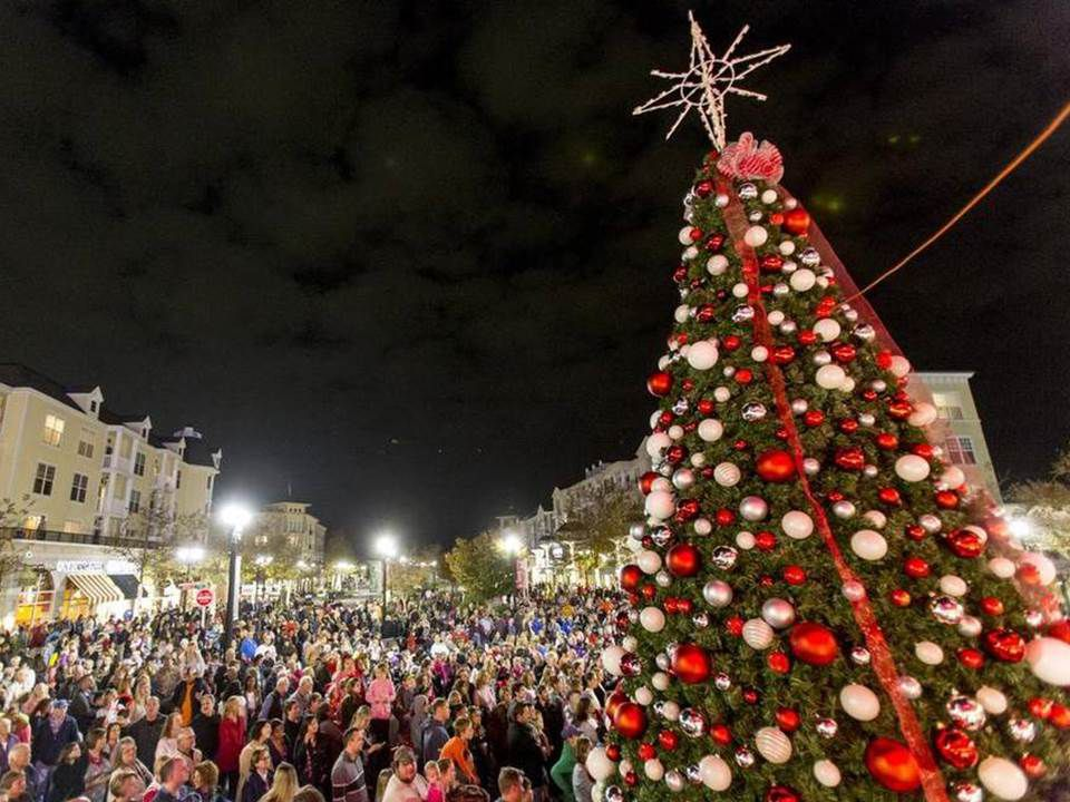 The Market Common Christmas tree lighting ceremony