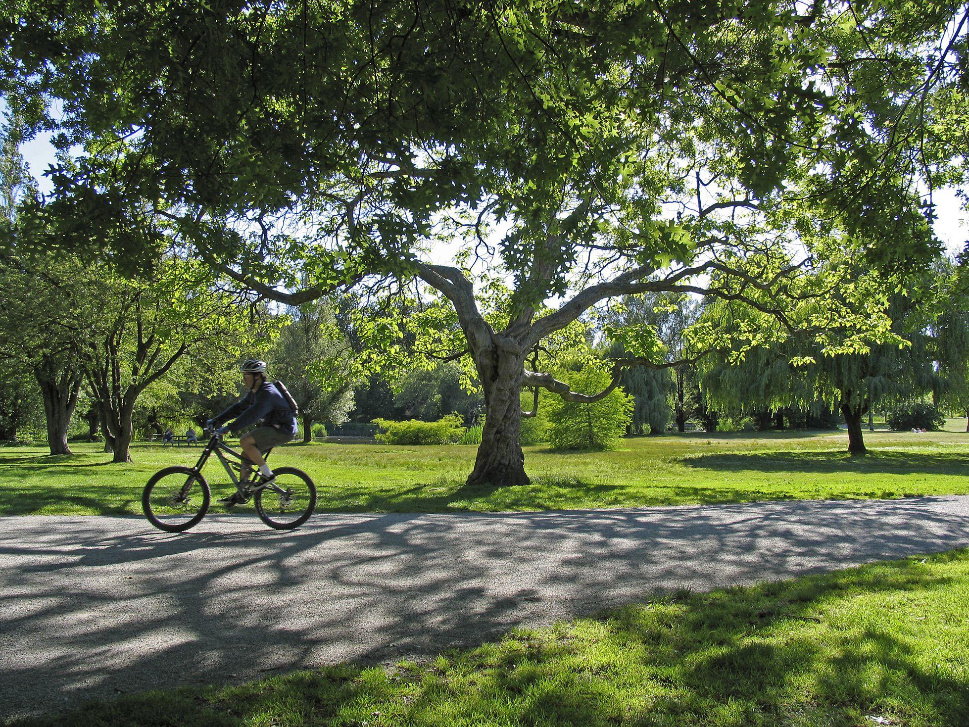 A cyclist rides through Jericho Park