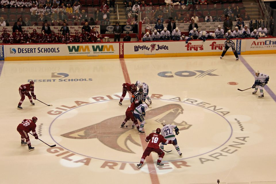Arizona Coyotes NHL Hockey