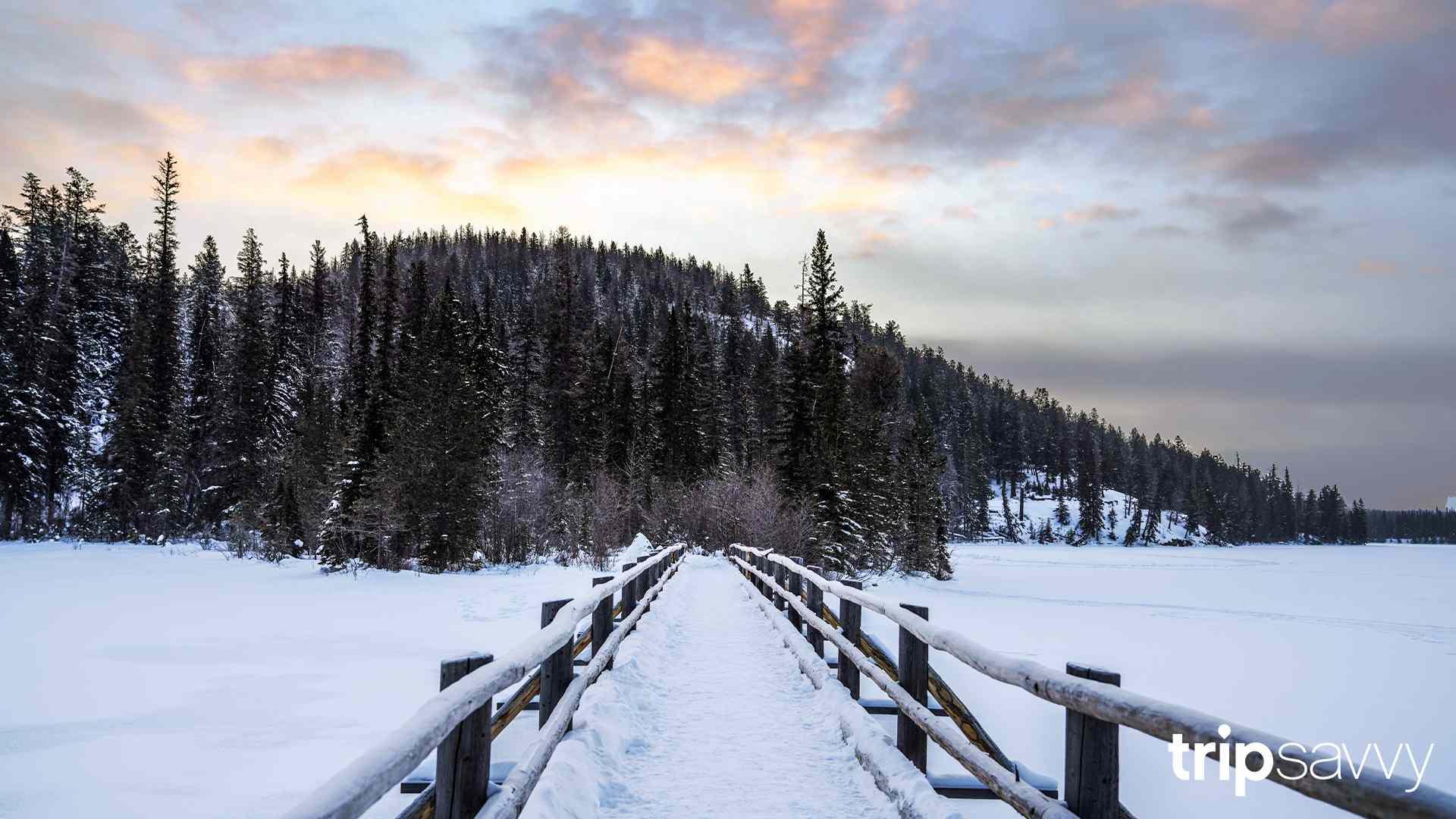A snowy landscape in Jasper, Canada