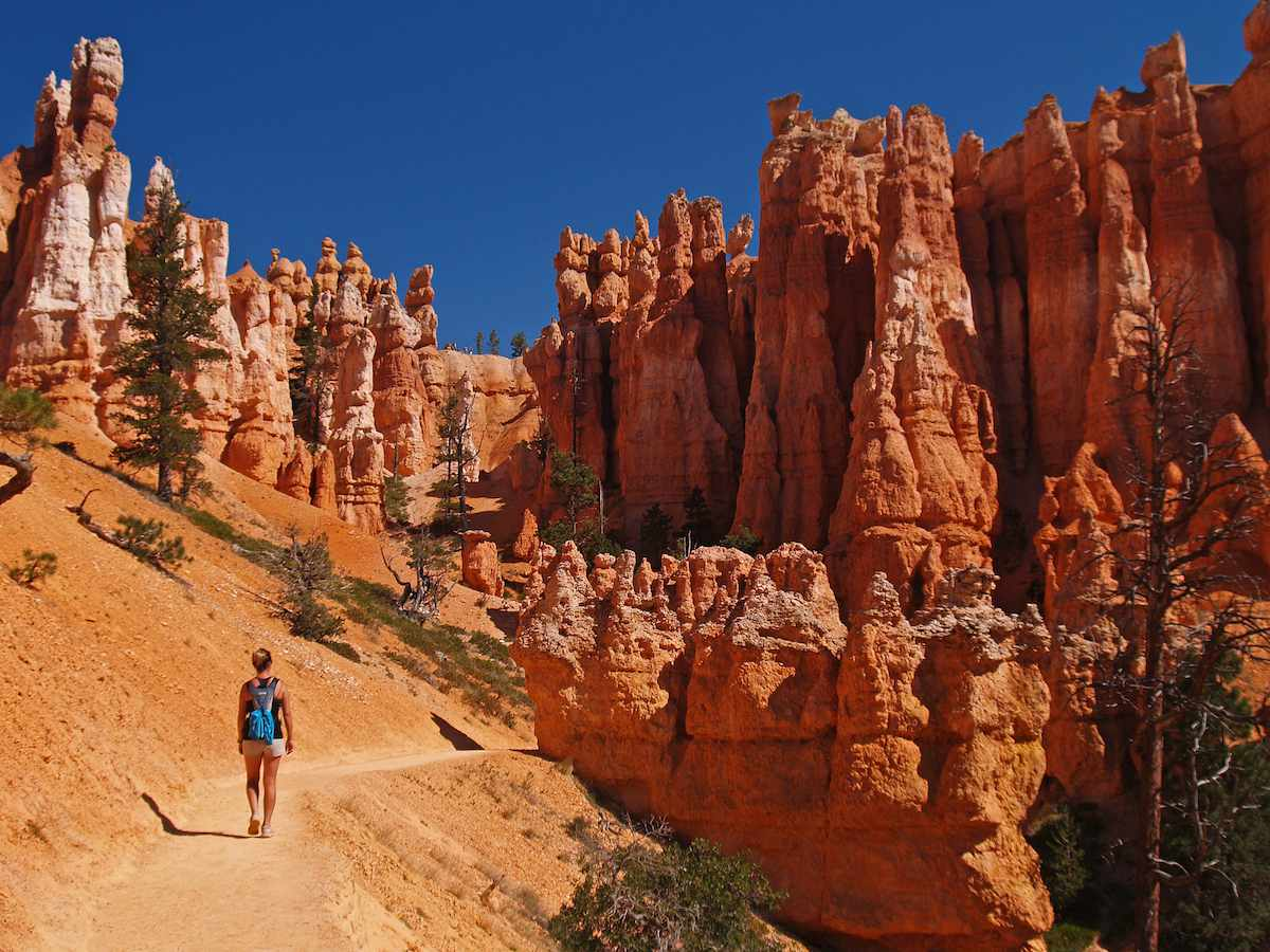 A hiker walks along a trail with red hoodoos towering overhead.
