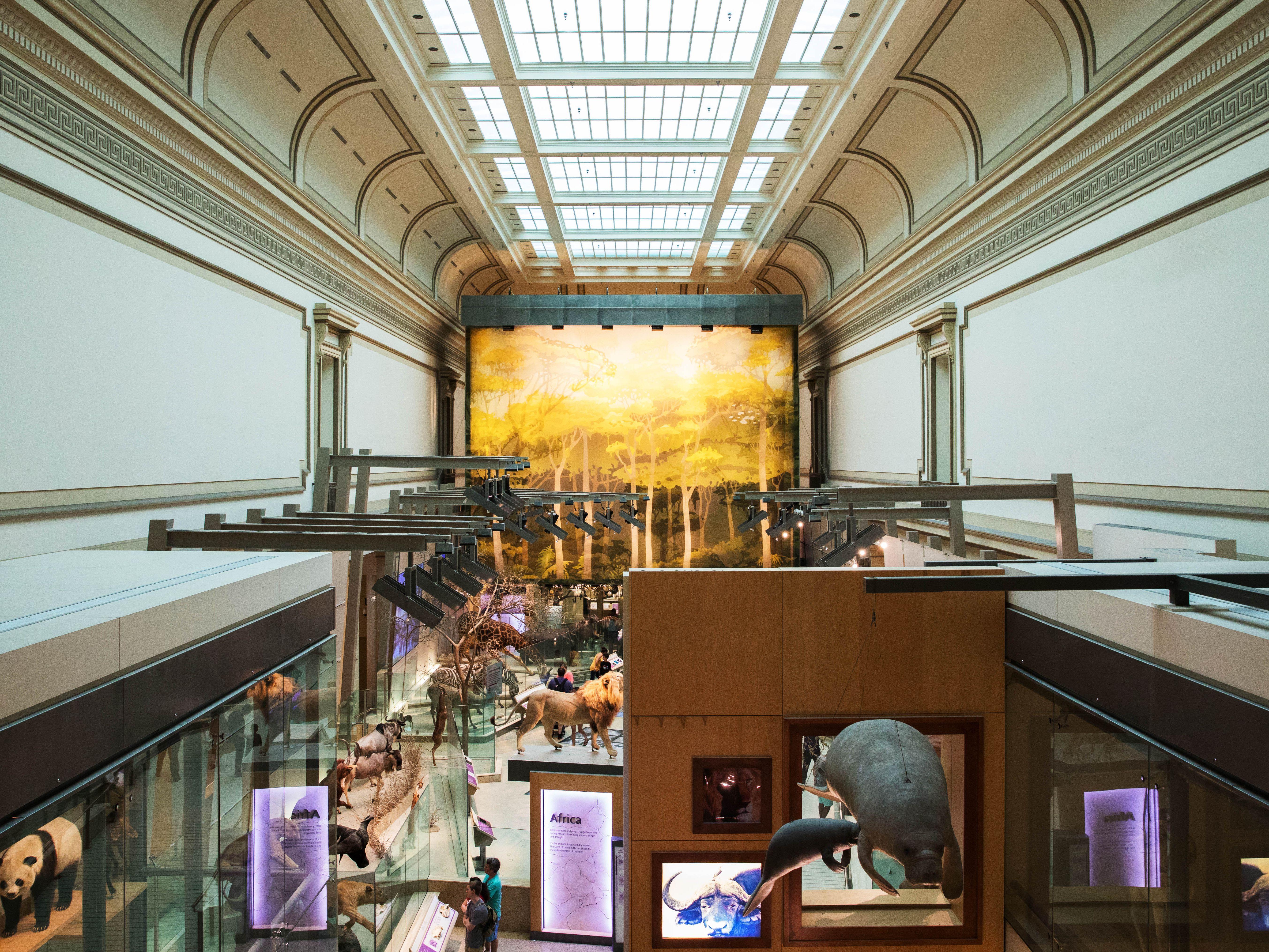 Best 15 Washington, D C  Museums