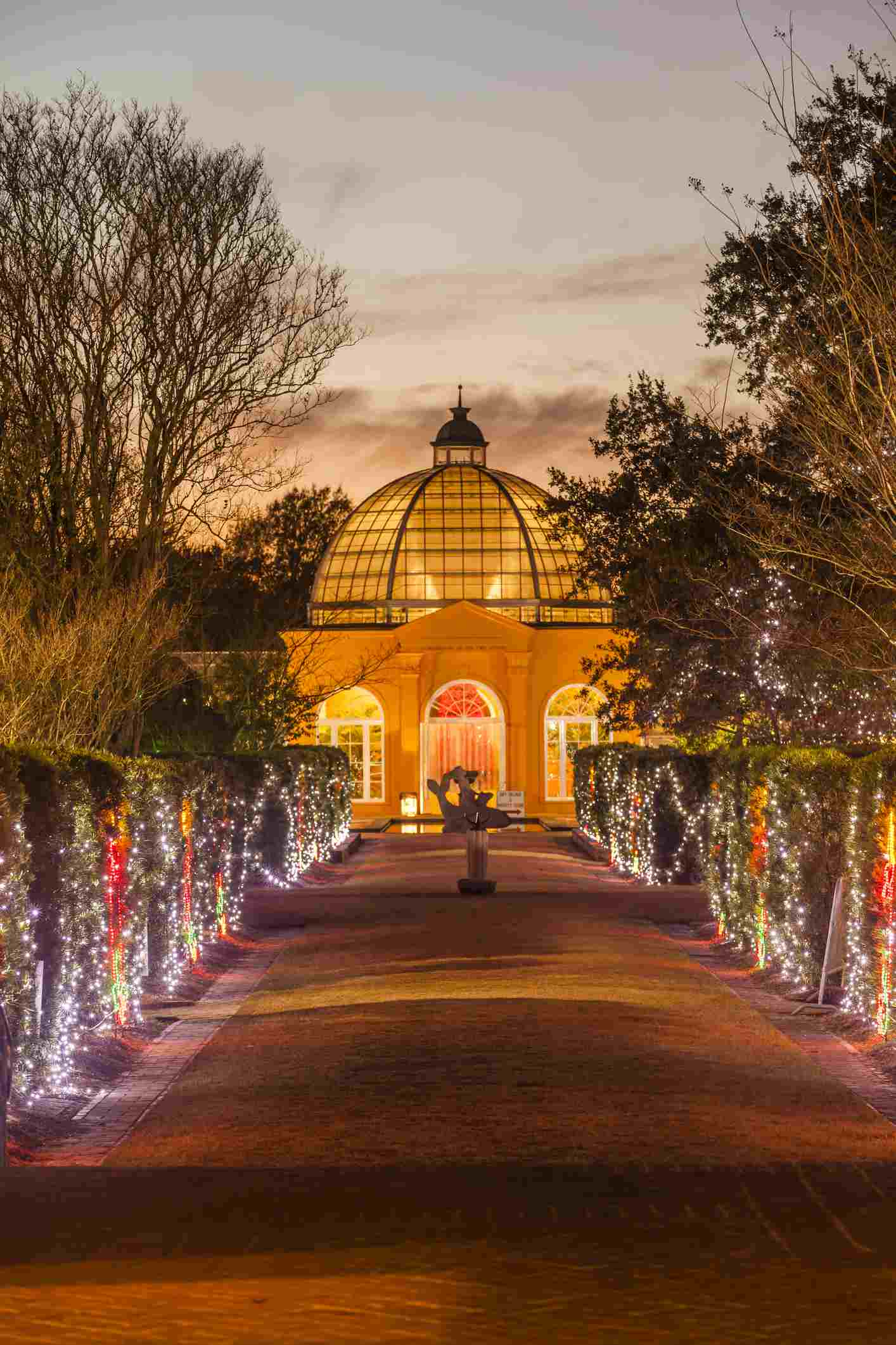 Christmas Lights at New Orleans Botanical Gardens