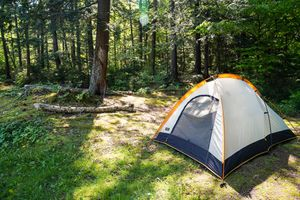 A single tent set up in the woods