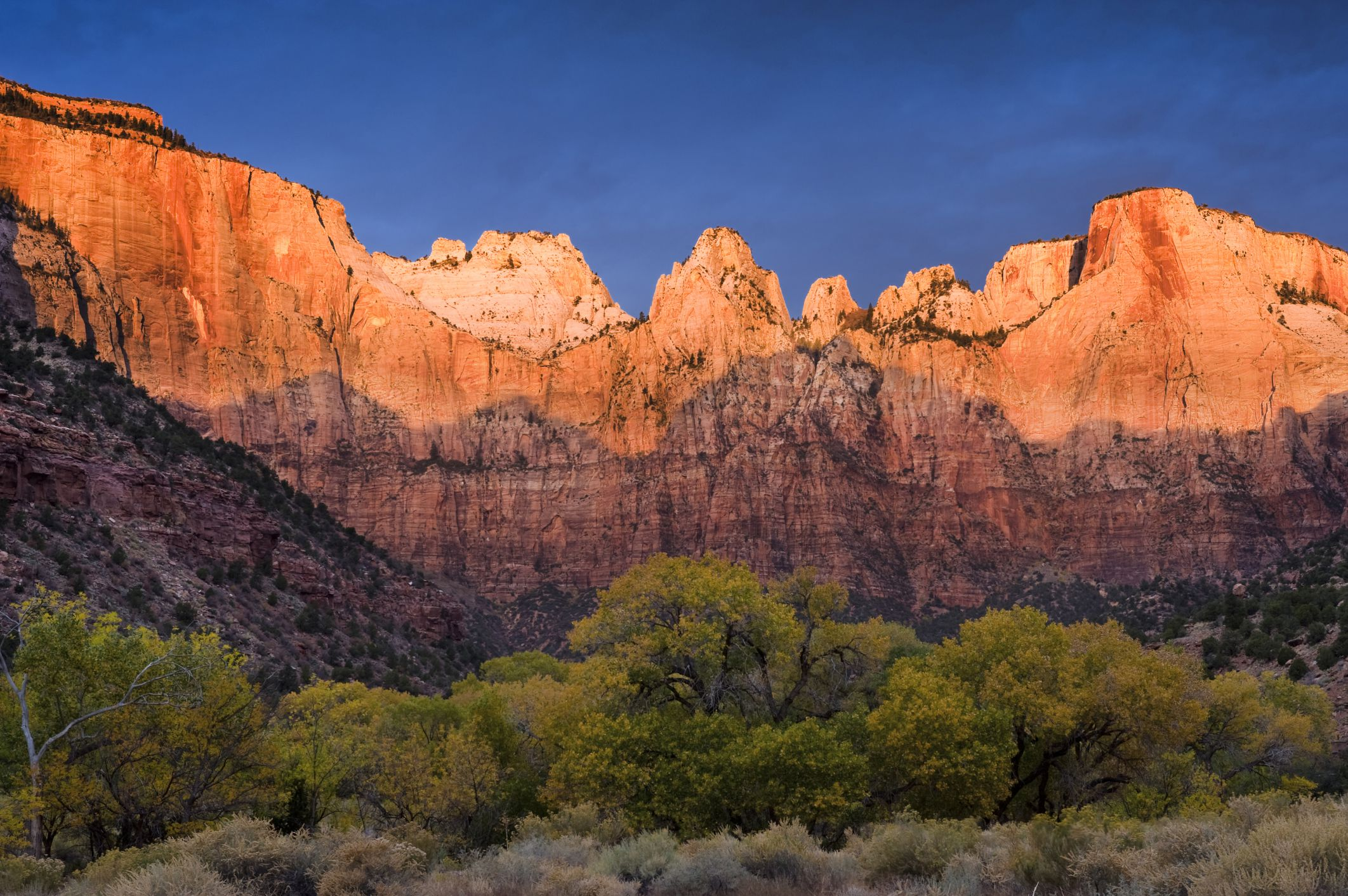 Top 10 National Parks to Visit During Spring