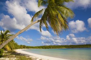 Sun Bay in Vieques, Puerto Rico