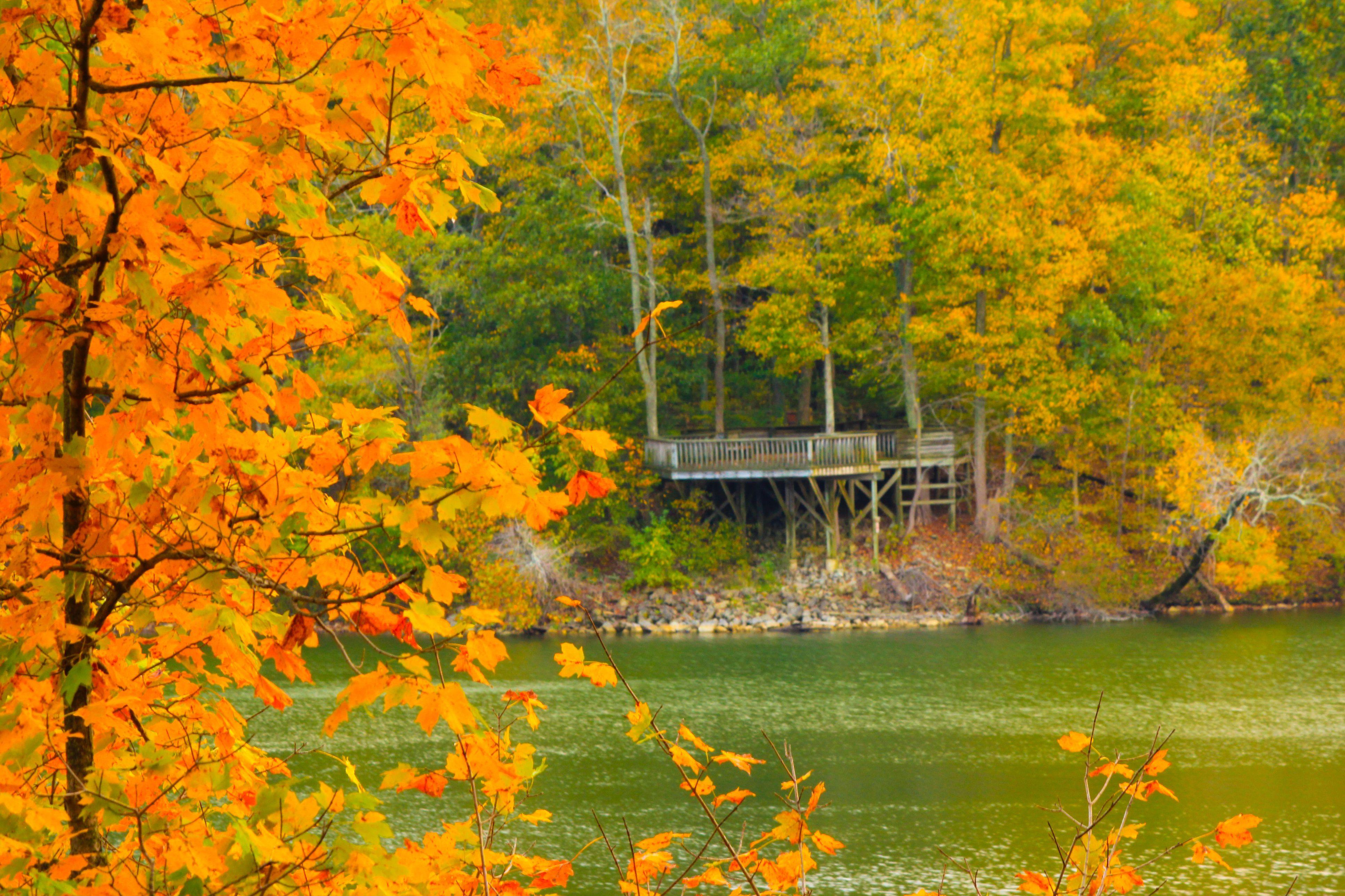 Fall foliage Caesar Creek State Park Ohio
