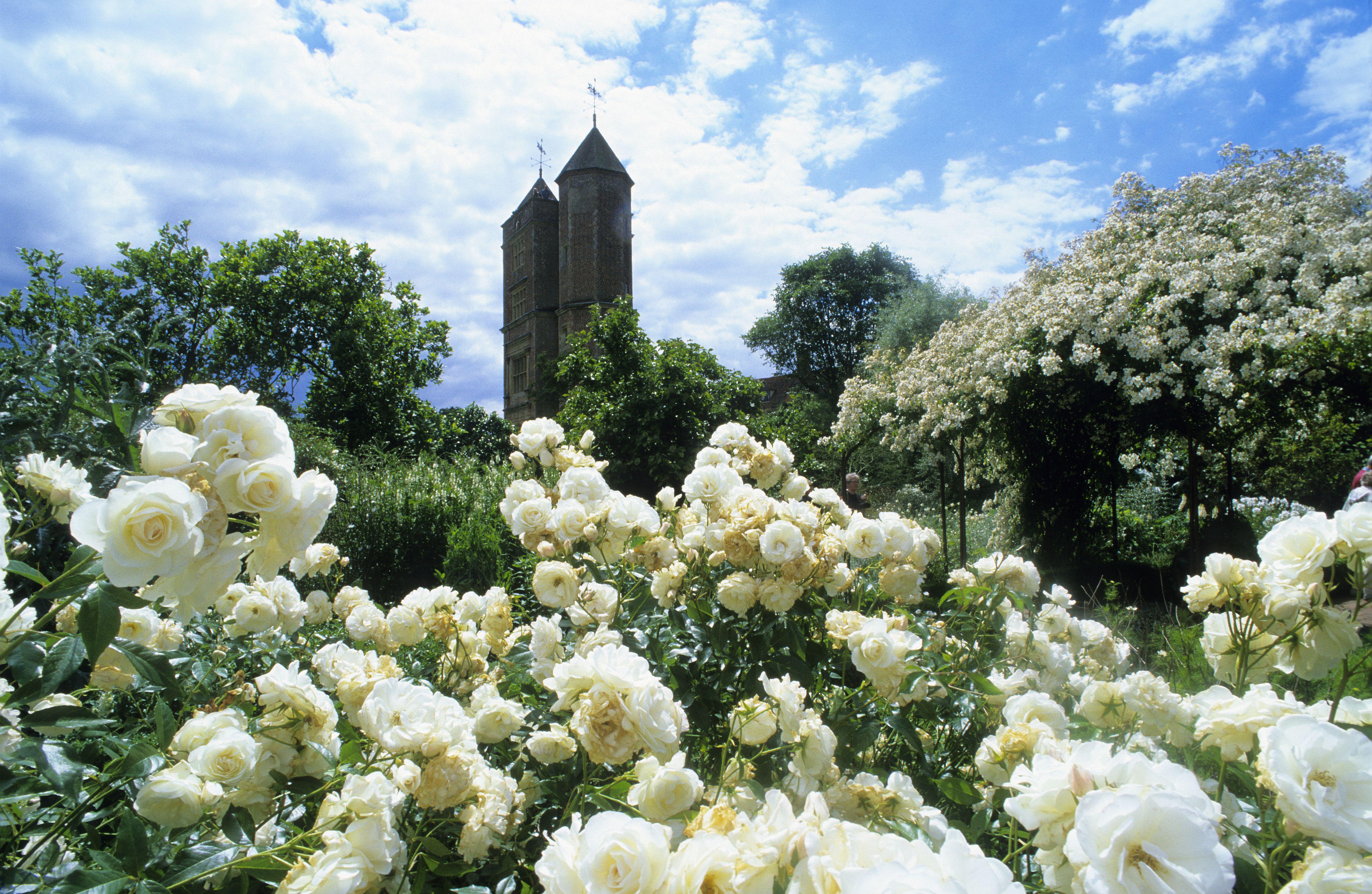 Sissinghurst Castle White Garden