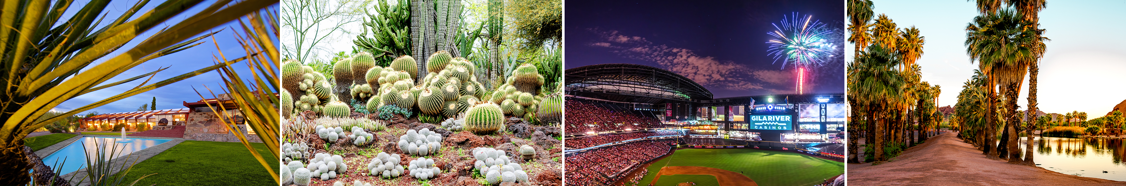 A collage of pictures including wild cactus plants, some local parks, and fireworks over the Chase Baseball Stadium which is home to the Arizona Diamondbacks