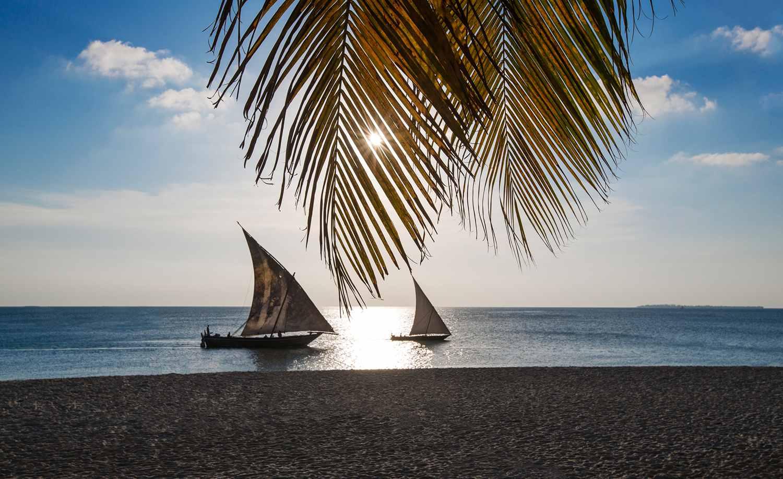 Sailboats on a tropical ocean