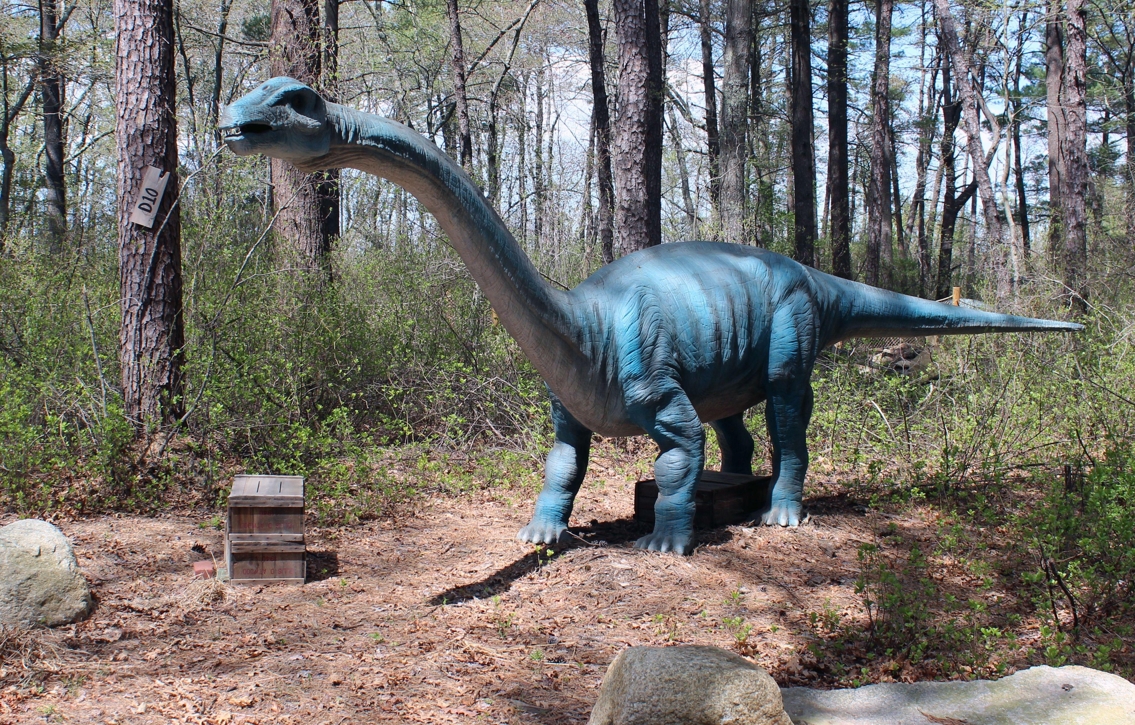Dinoasur at Edaville U.S.A.