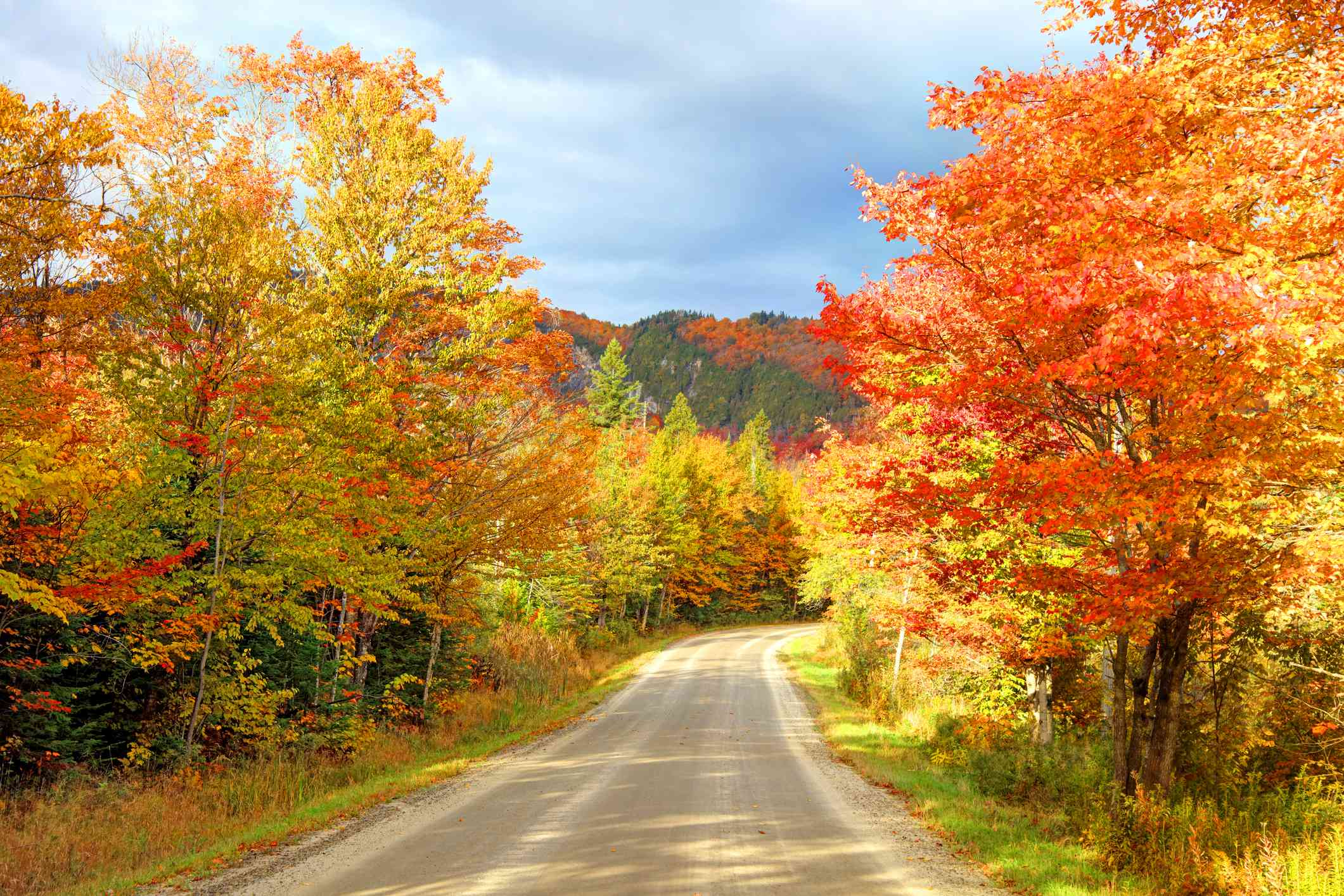 Autumn road in the Northeast Kingdom of Vermont