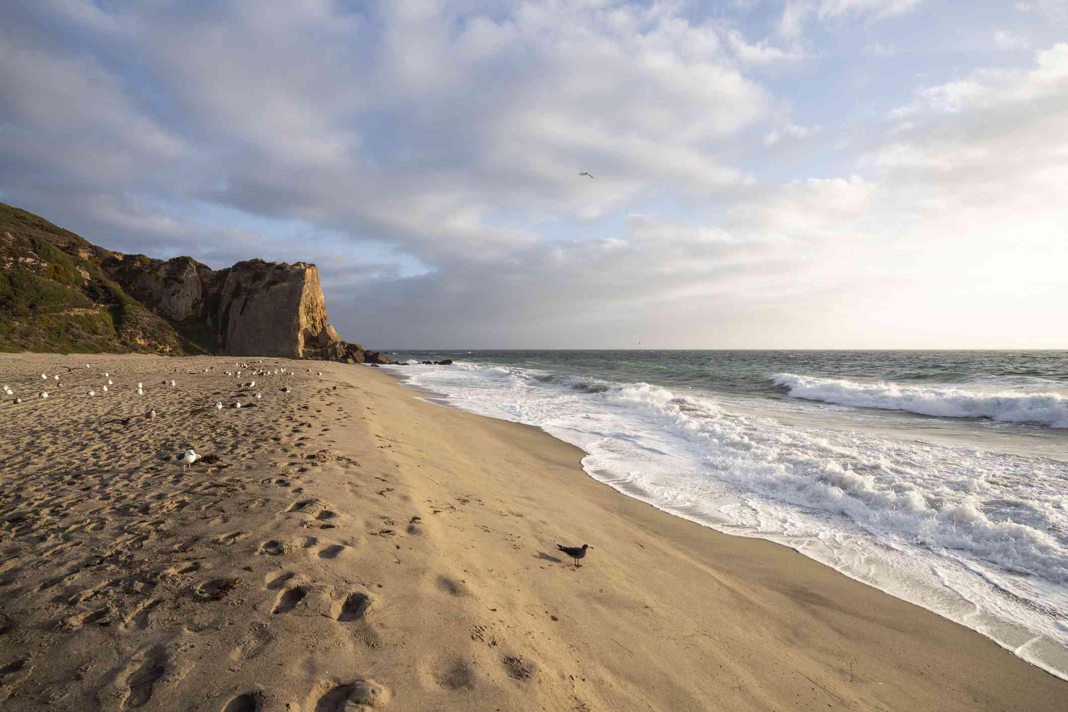 Point Dume Cliff at Westward Beach in Malibú California