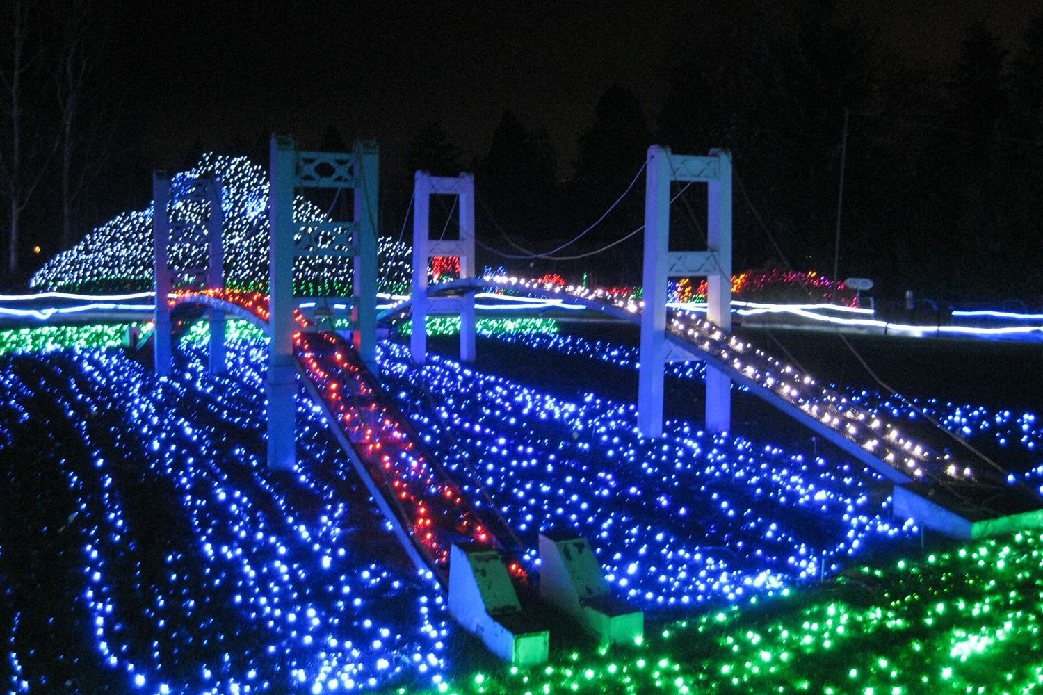 Best Christmas Lights In Seattle Tacoma And Bellevue