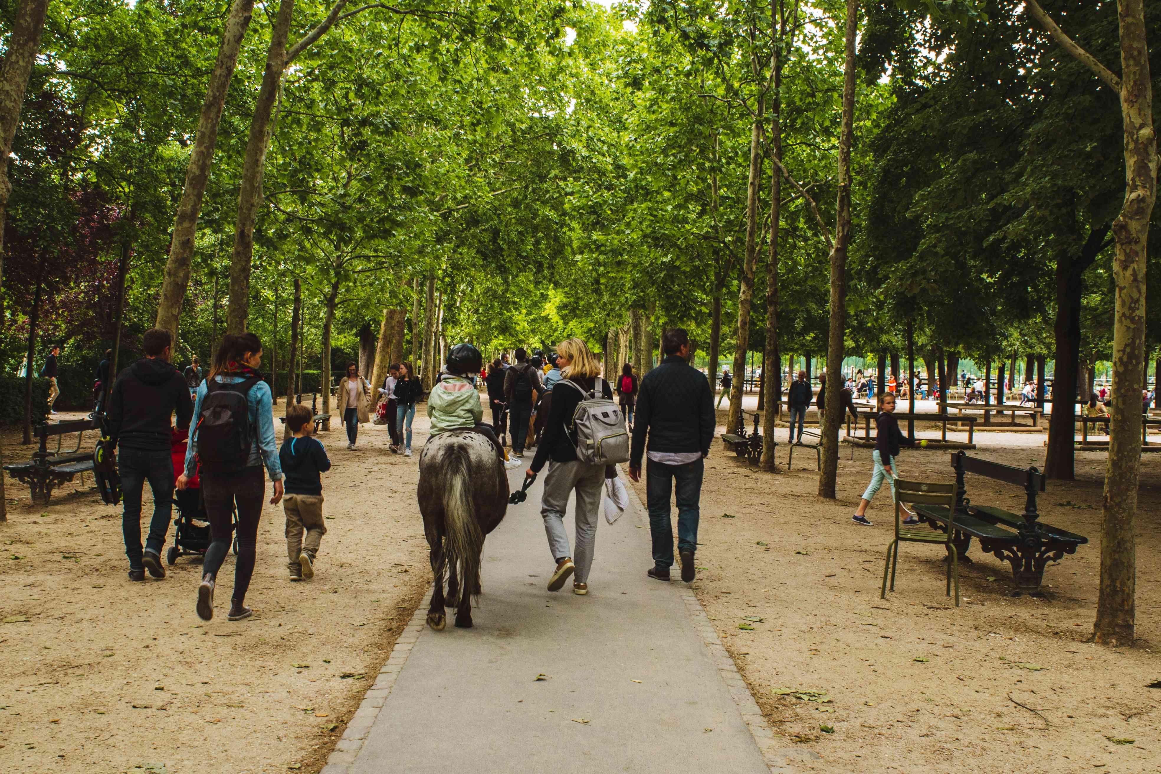 Kids riding ponies in Luxembourg garden