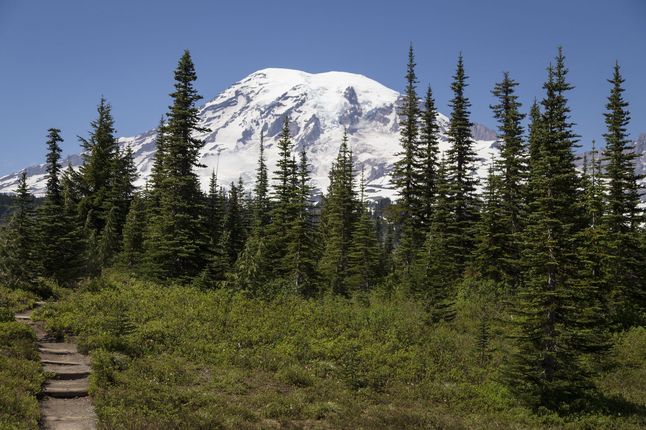5 of the Best Washington RV Parks