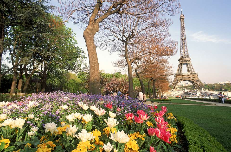 Eiffel Tower with spring flowers, Paris, France