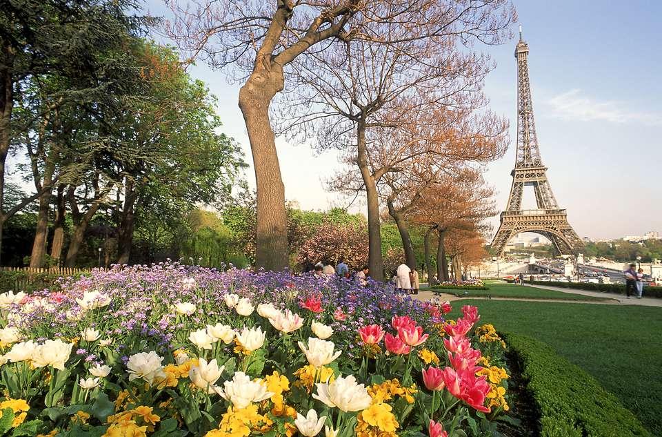 Torre Eiffel con flores de primavera, París, Francia