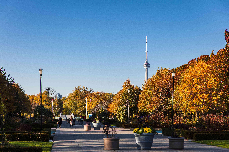 Centre Island foliage in Toronto
