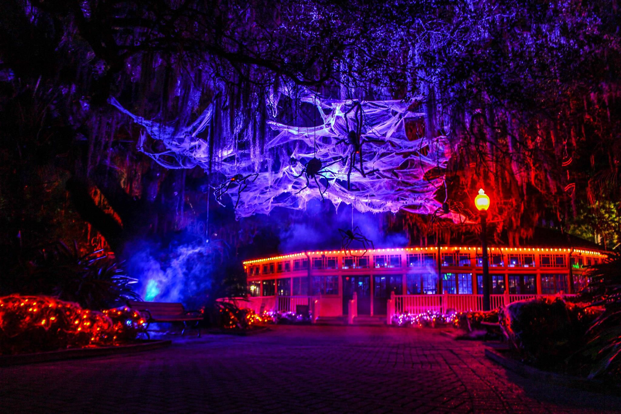 New Orleans Halloween Events 2020 Things to Do for Halloween in New Orleans