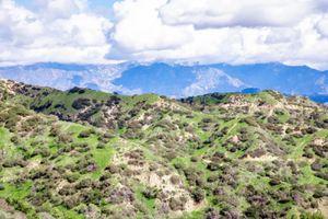 Griffith Park hilltop view