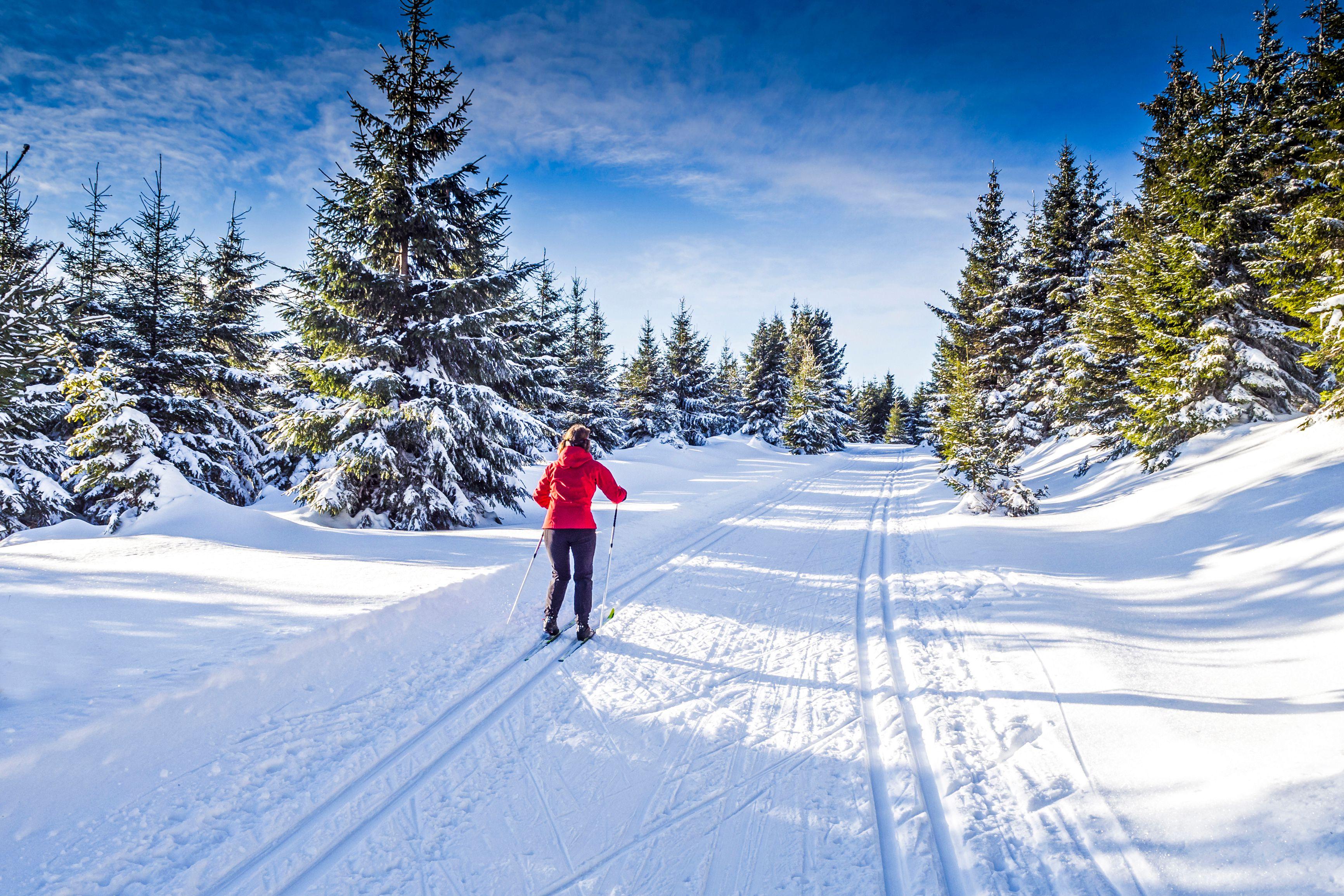 White Pass Cross Country Skiing