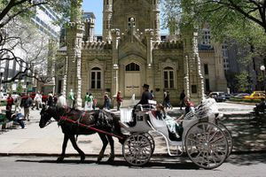 Horse and carriage passing in front of Water Tower