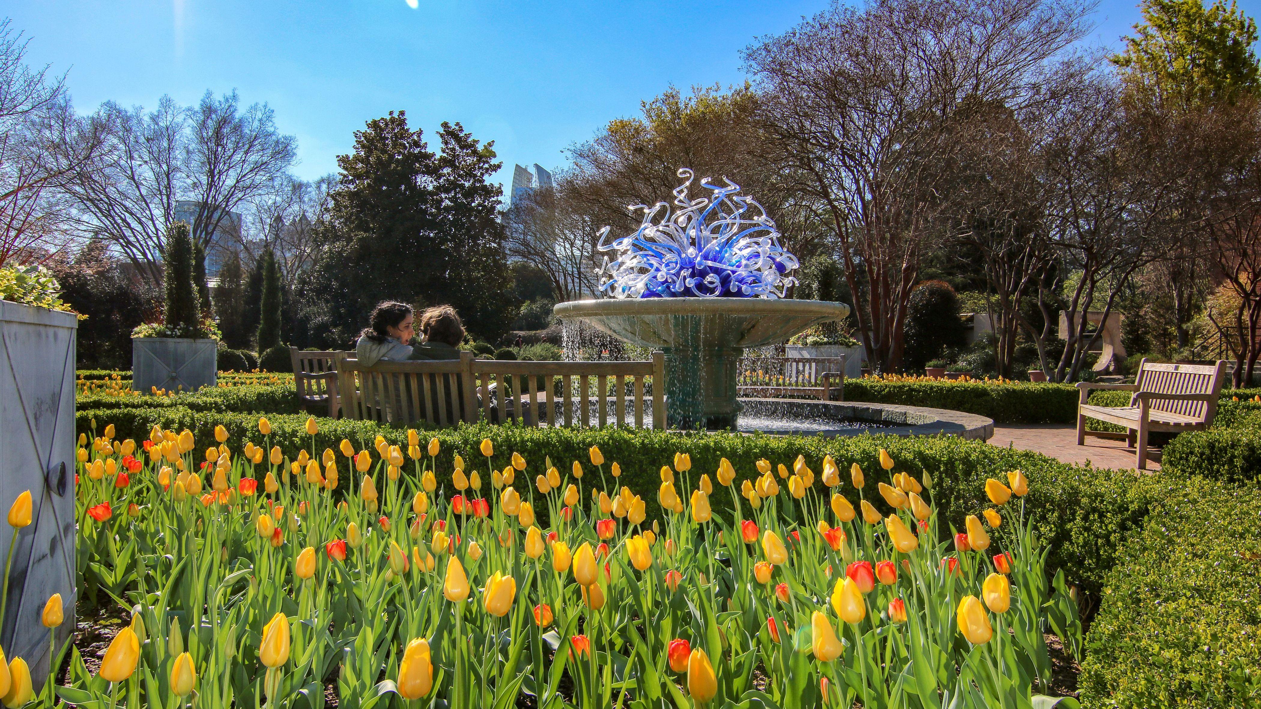 Atlanta Botanical Garden The Complete Guide