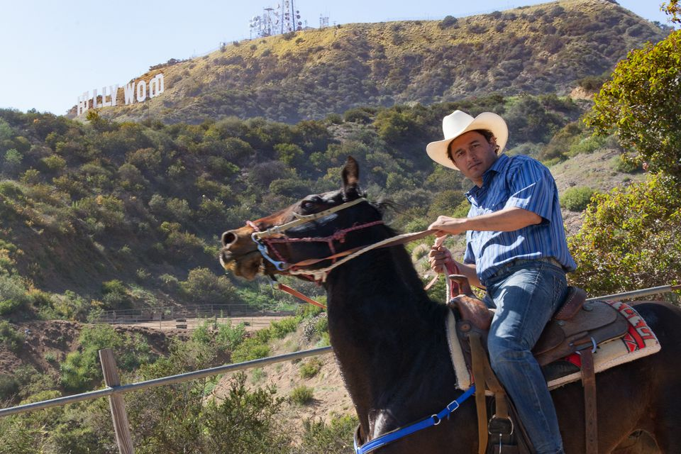 Horseback riding with a view of the Hollywood Sign