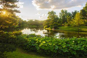 Japanese Garden at Missouri Botanical Garden