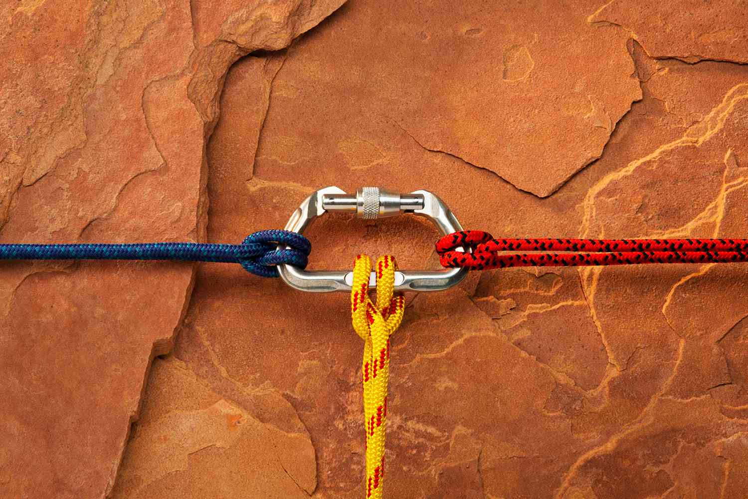 Carabiner with ropes attached against rock face.