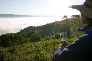 Woman drinking wine, Mountain Vineyard, Napa Valley, California