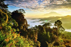 Mount Kinabalu and clouds of the landscape in Sabah, Borneo