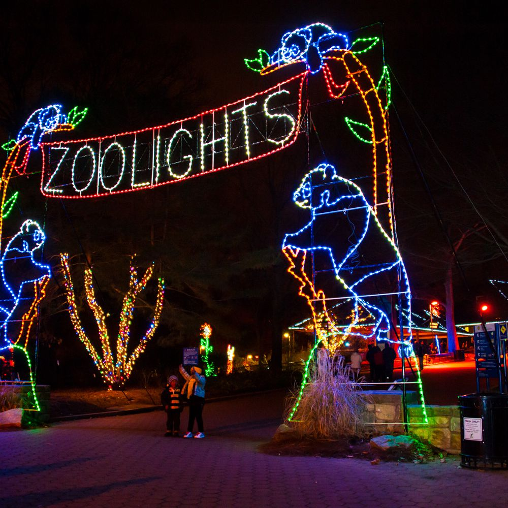 Christmas Zoo Lights 2020 ZooLights: Christmas Lights at the National Zoo