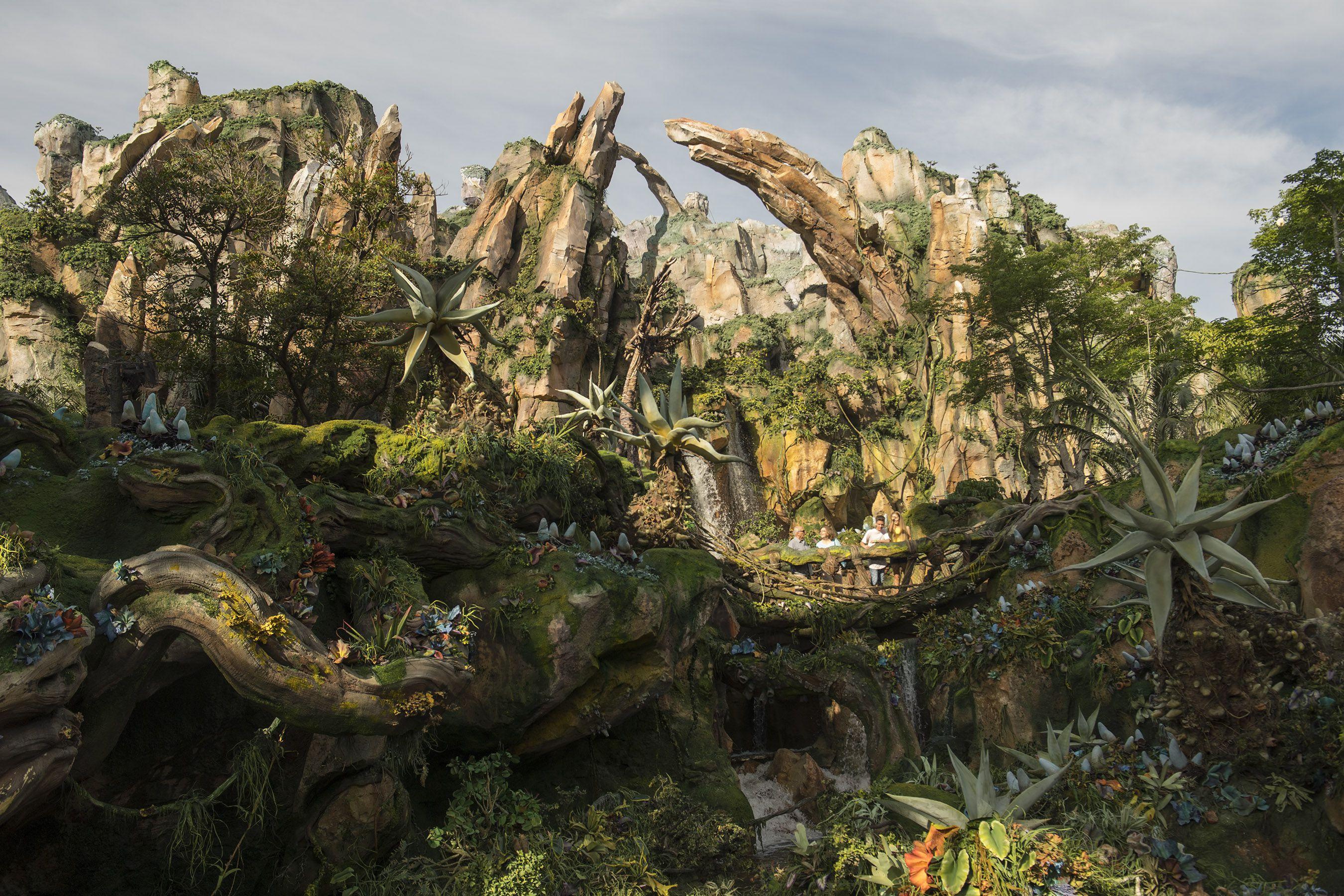 Pandora, the World of Avatar in Animal Kingdom
