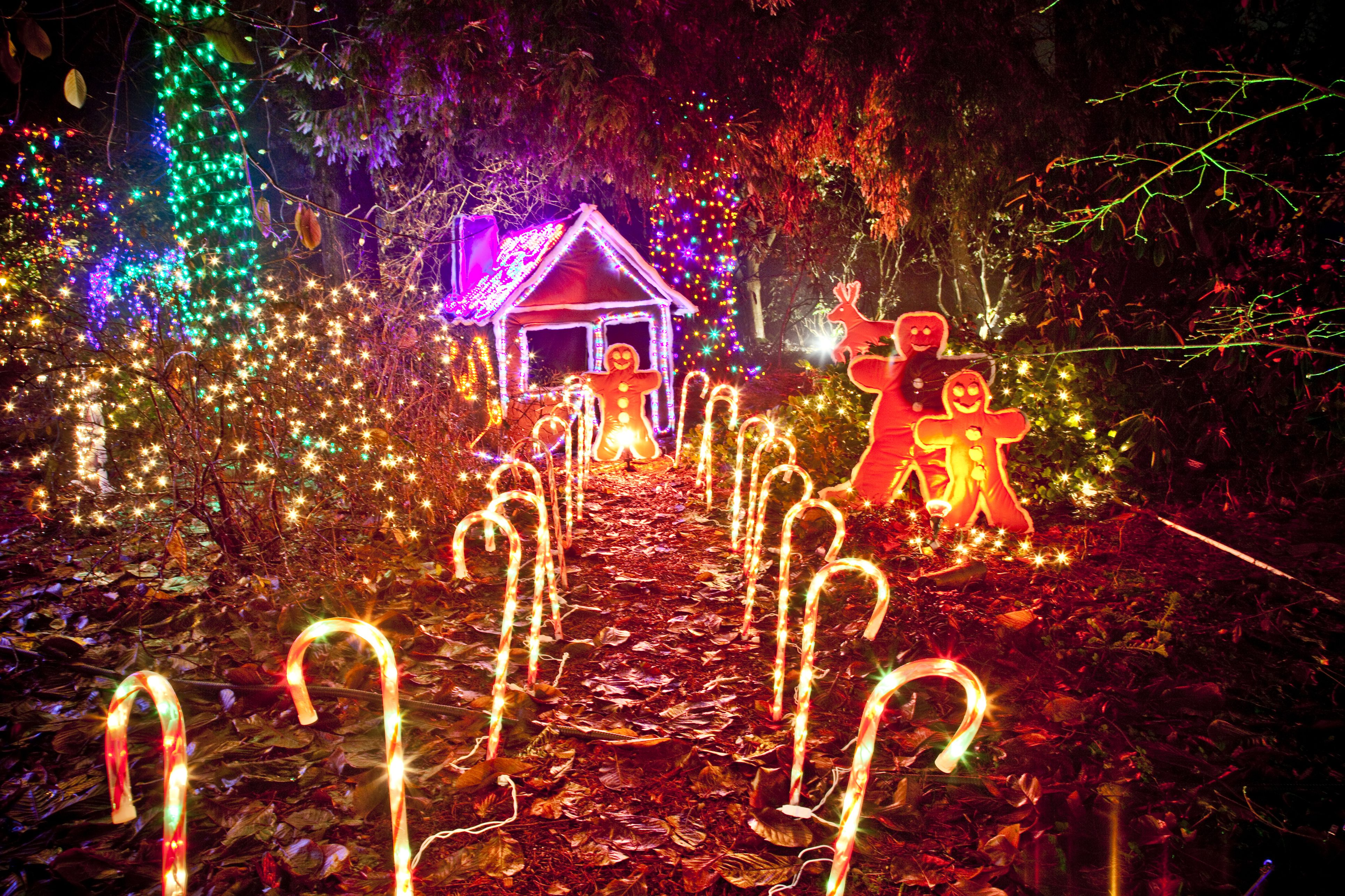 6 Places to See the Christmas Lights in Vancouver