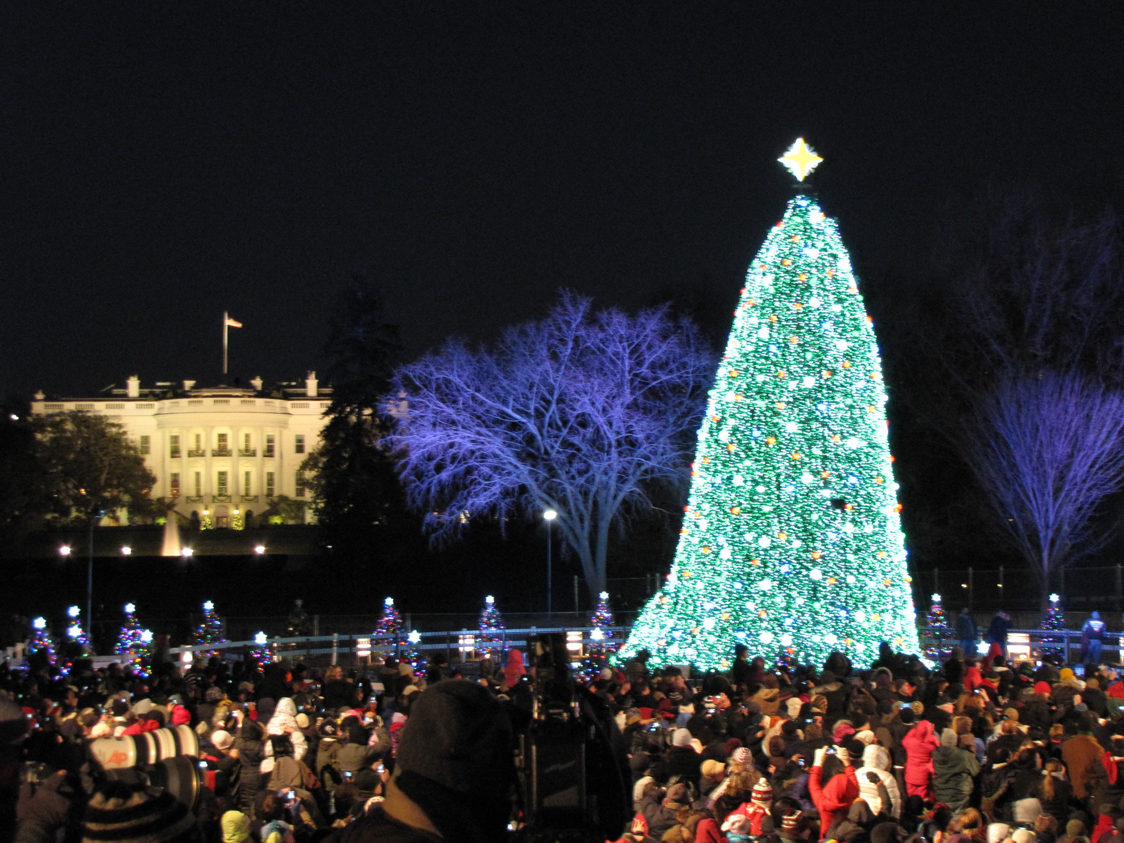 Christmas Tree Lighting Ceremonies in DC, MD and VA