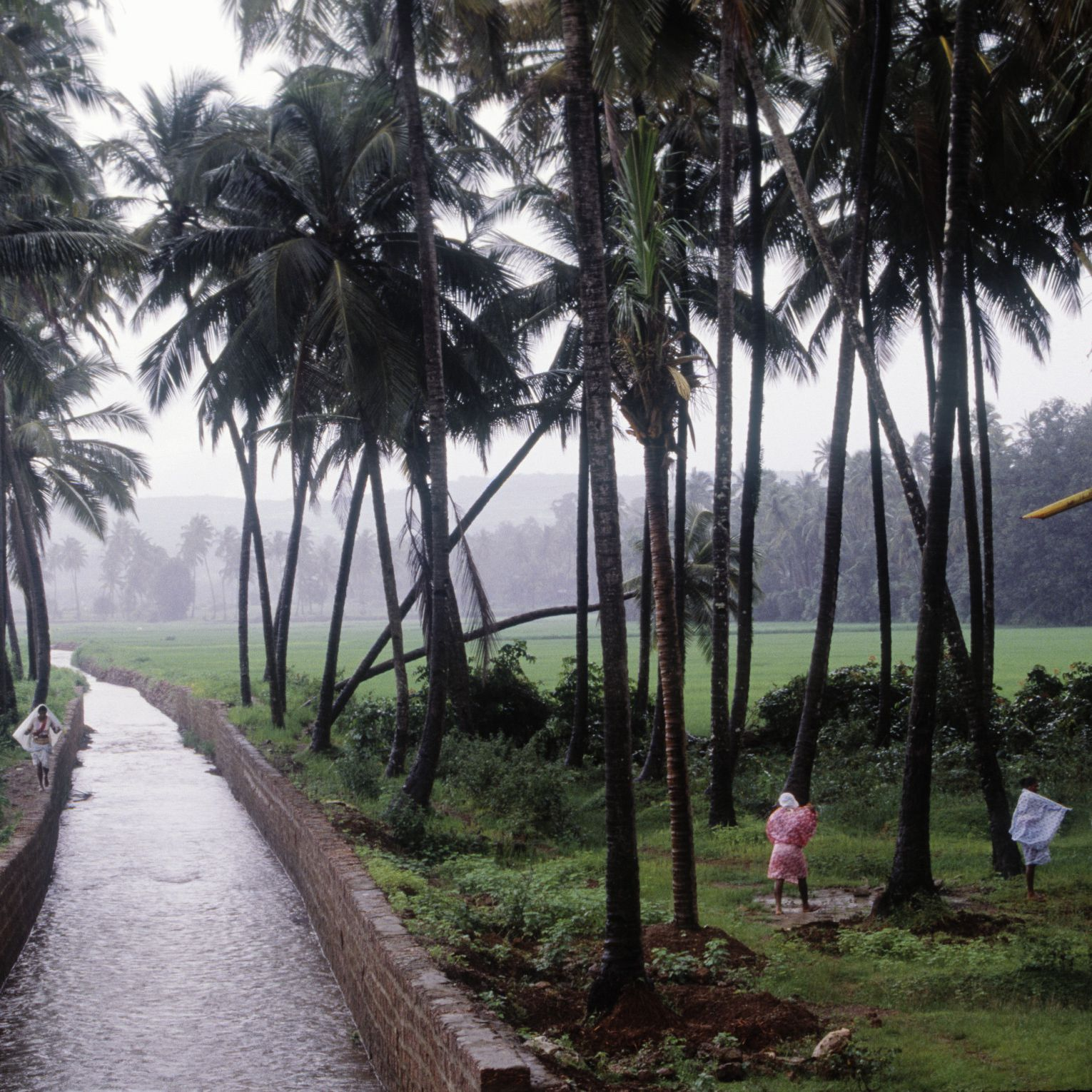 Goa in the Monsoon Season: Essential Visitor's Guide